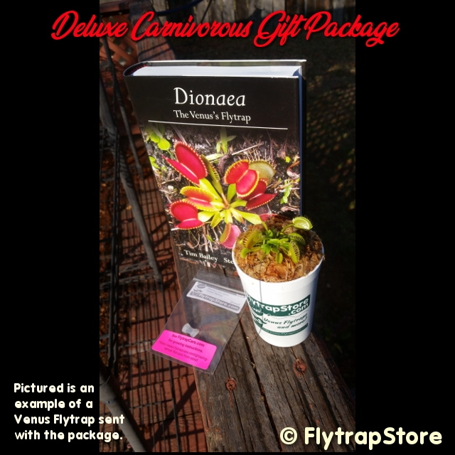 Deluxe Carnivorous Plant Gift Package
