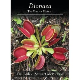 Dionaea The Venus's Flytrap