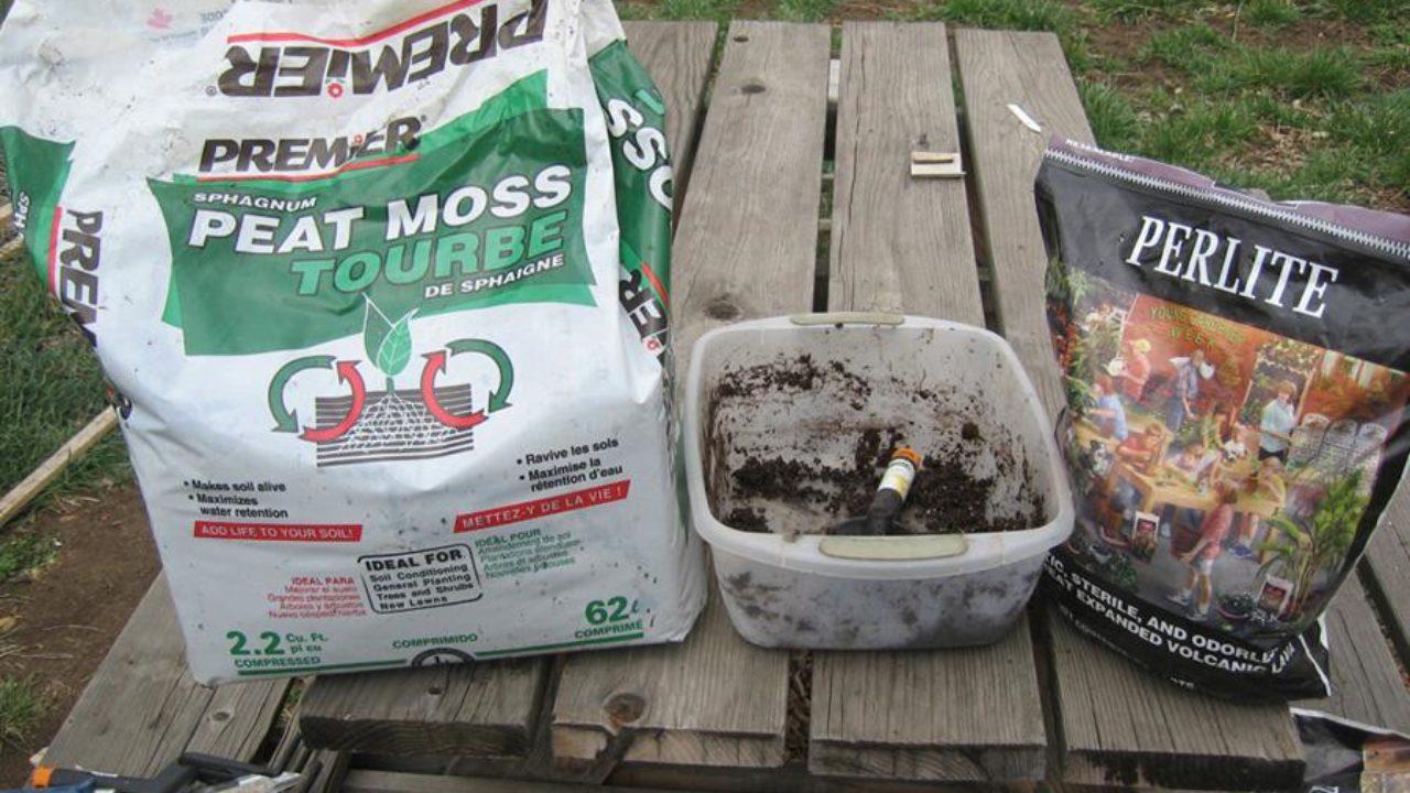 Venus Flytrap Soil And Potting Techniques Flytrapcare Com
