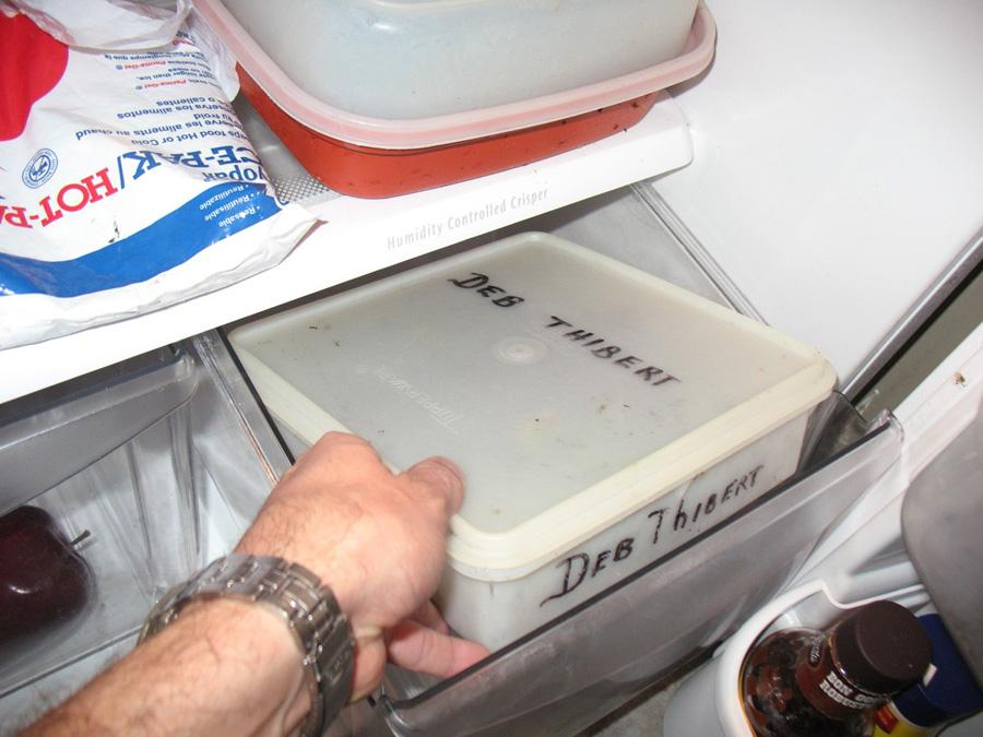 Placing the Container in the Crisper Drawer